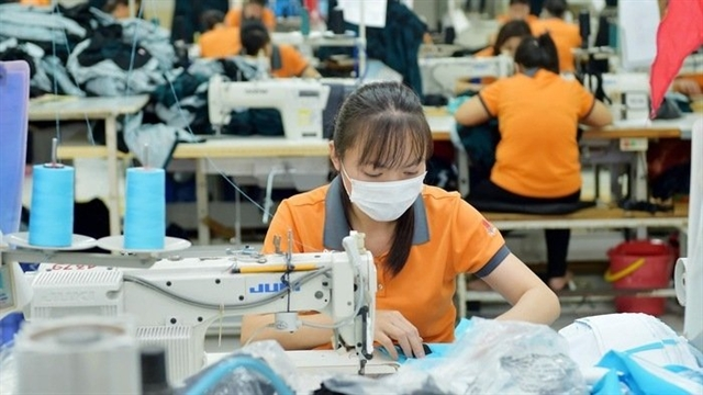 Việt Nams garment exports down in two months