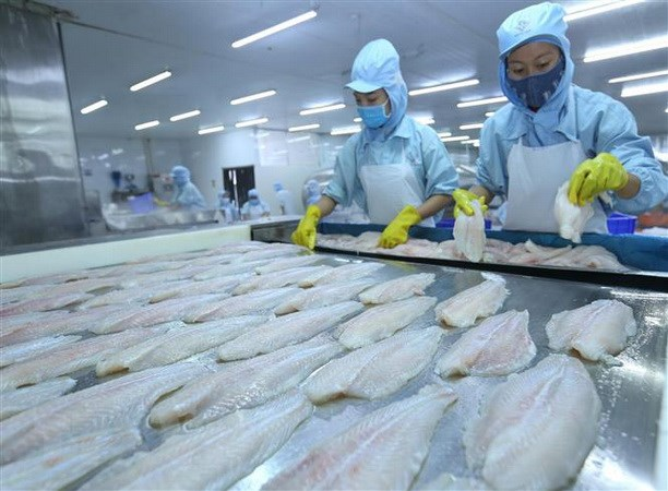 Seafood exporters floundering due to COVID-19
