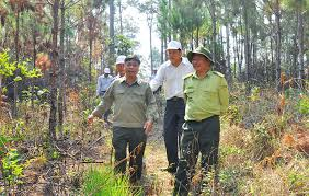 Lâm Đồng seeks ways to protect forests