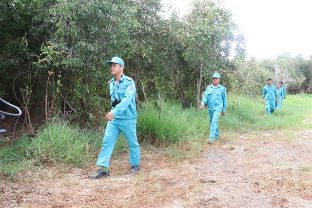 Đồng Tháp tightens forest fire prevention measures