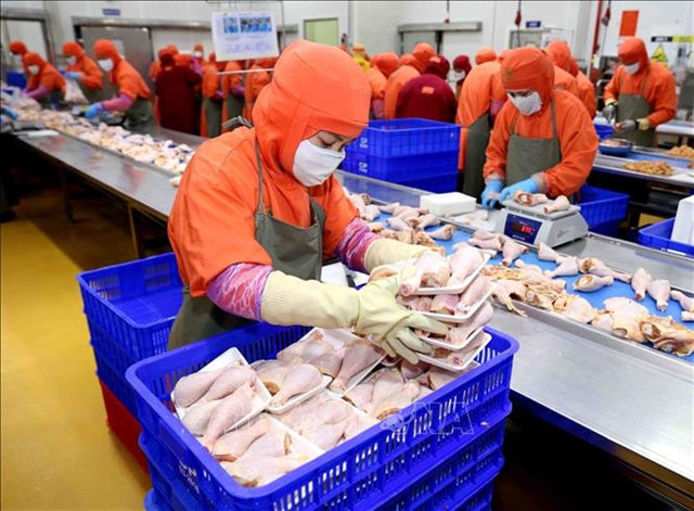 Russia to import Việt Nams processed chicken