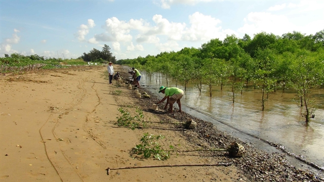 Trà Vinh to build two erosion prevention projects
