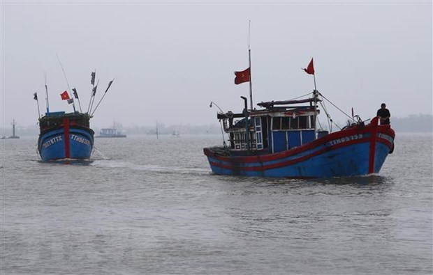 VN protests demands compensation for fishing ship China sank in Hoàng Sa waters