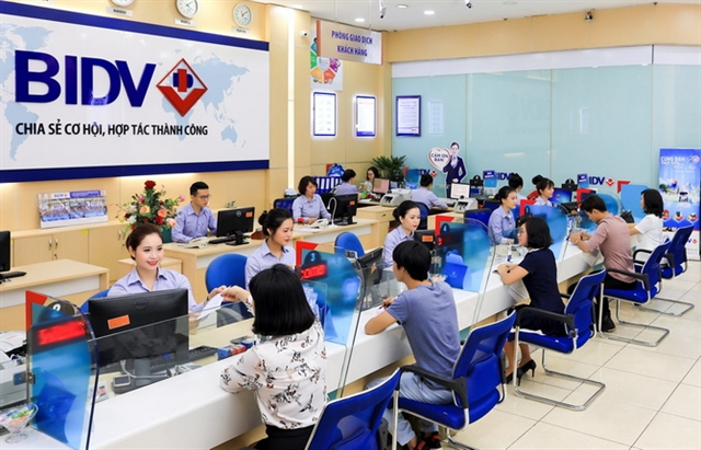 VN-Index witnesses largest one-day gain in 19 years