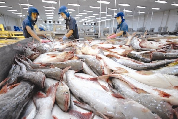 Tra fish exports to US China rise in March