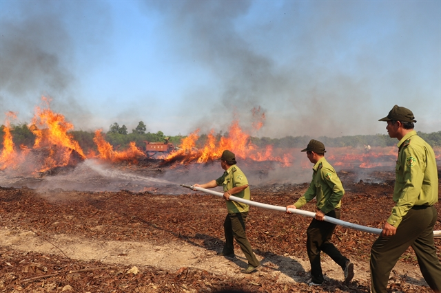 Đồng Nai braces for forest fires instructs local authorities to be on their toes