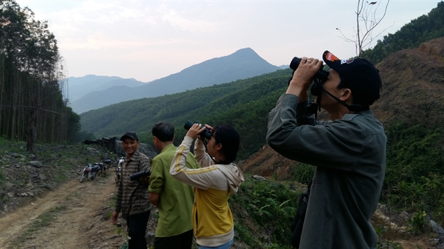 Strict patrol set for protection of endangered langurs from COVID-19