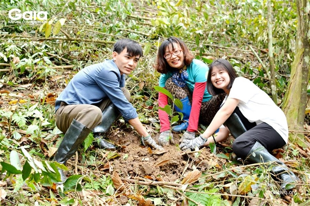 NGO plants 2000 timber trees in 2 Thanh Hóa Province forests