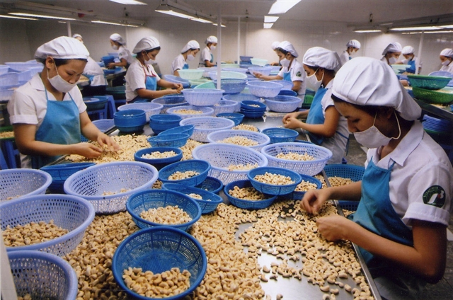 Vinacas tells cashew enterprises to trade carefully