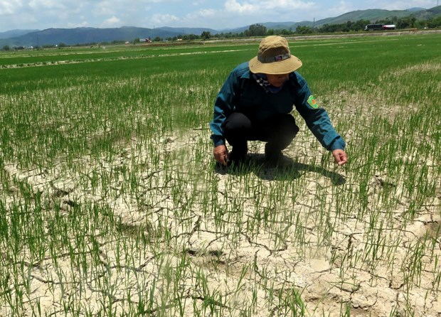 Central province faces drought due to extreme hot weather