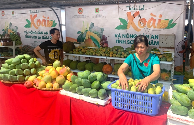 Sơn La exports mangoes to China