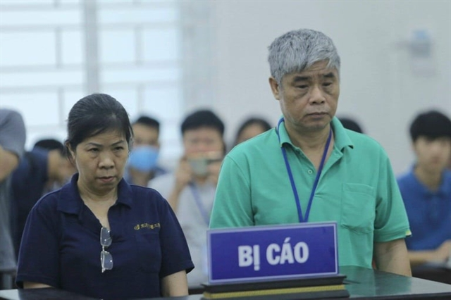 Trial on Hà Nội school boy death adjourns