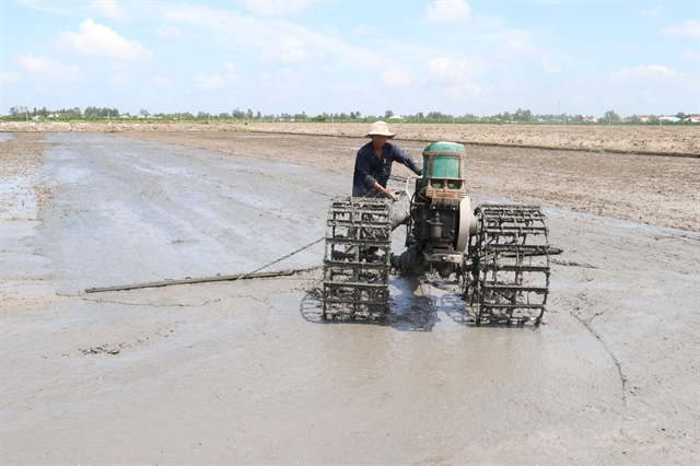 Đồng Tháp improves irrigation works to water summer – autumn rice