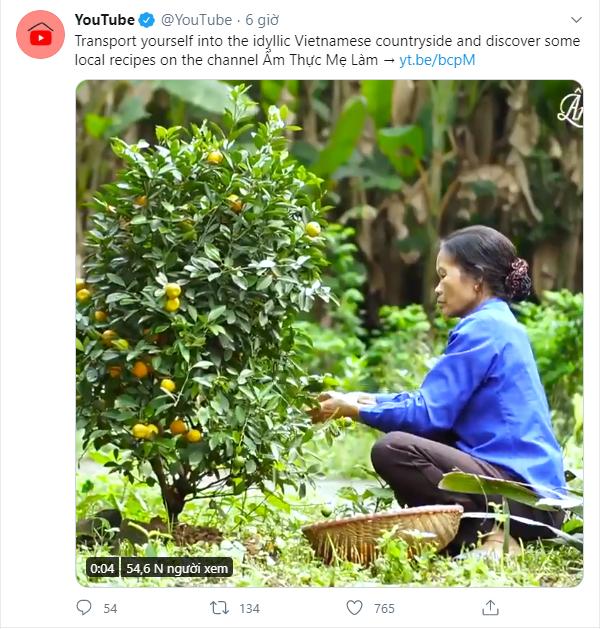 YouTube channel showcases idyllic Vietnamese countryside