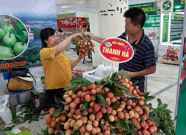 Thanh Hà lychee fair opens in Hà Nội