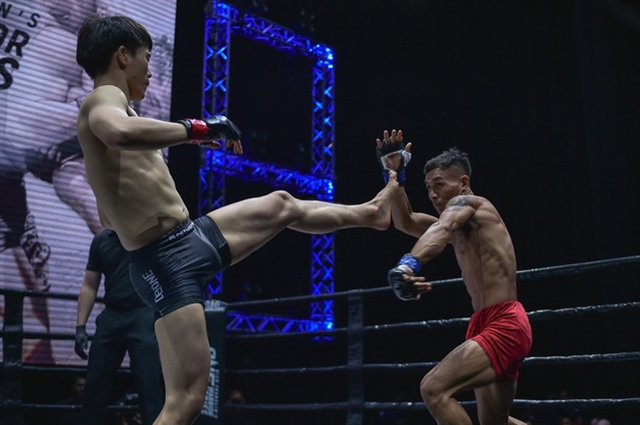 Mixed Martial Arts Federation set up in Việt Nam