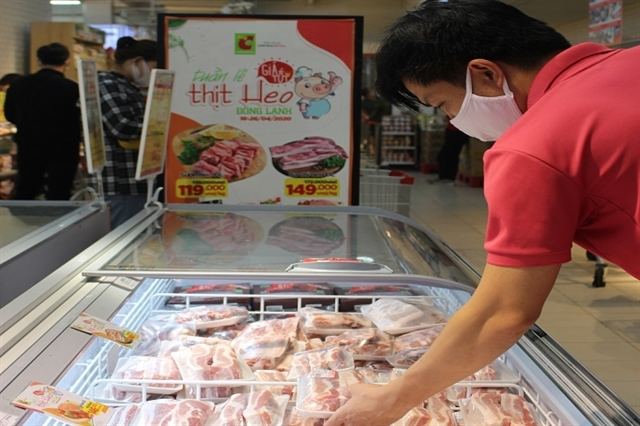 Imported pigs from Thailand expected to reduce Việt Nams pork price