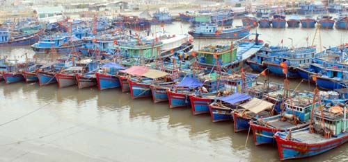 Fishing village going from strength to strength