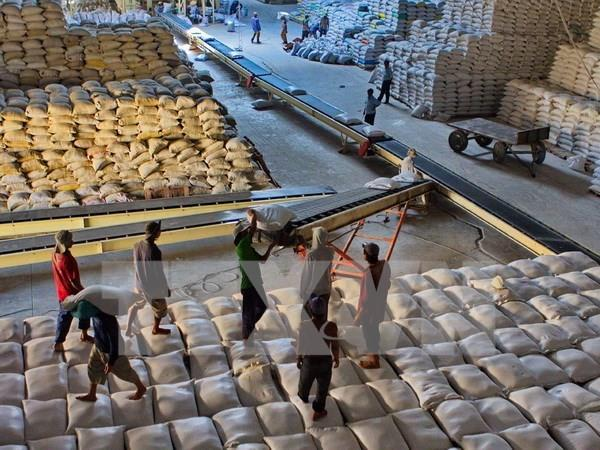 Việt Nam wins bid to supply 60000 tonnes of rice to Philippines