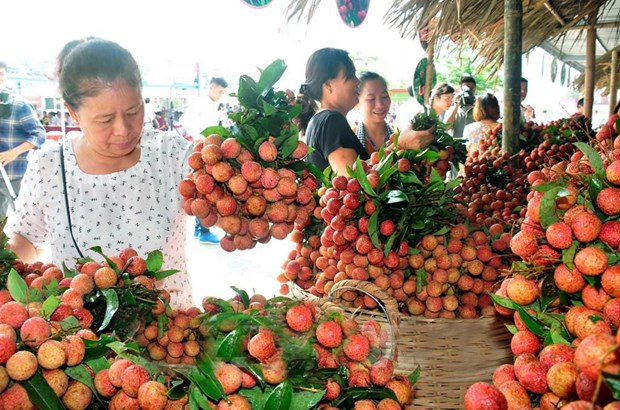 Veg fruit exports exceed 1.5 billion in first half