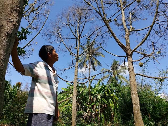 Mekong Delta adapts to saline intrusion