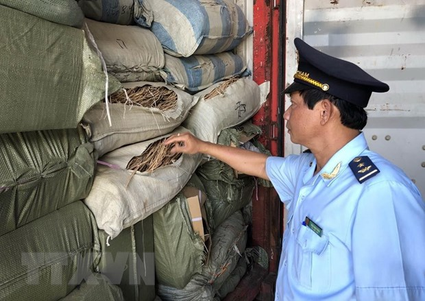 Containers of allegedly smuggled pharmaceutical material found at Tiên Sa port
