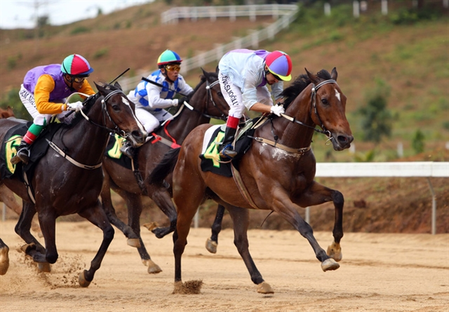 Việt Nam should develop a gambling industry to boost tourism