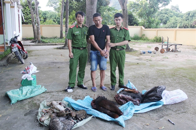 Nghệ An police uncover wildlife trafficking ring from Lao to Việt Nam