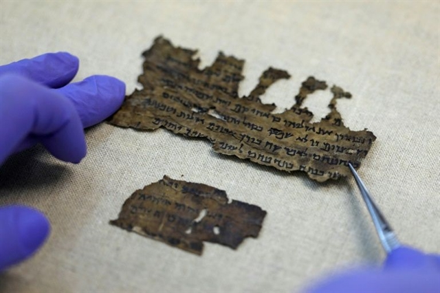 DNA research uncovers Dead Sea Scrolls mystery