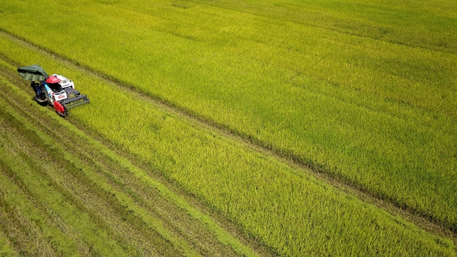 Việt Nam agriculture to be worlds top 15 most developed