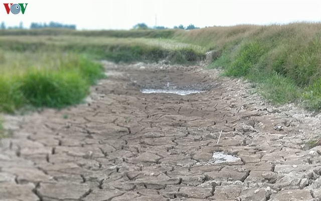 Nghệ An Province suffers severe drought