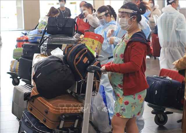 Nearly 280 Vietnamese citizens fly home from Russia and Belarus