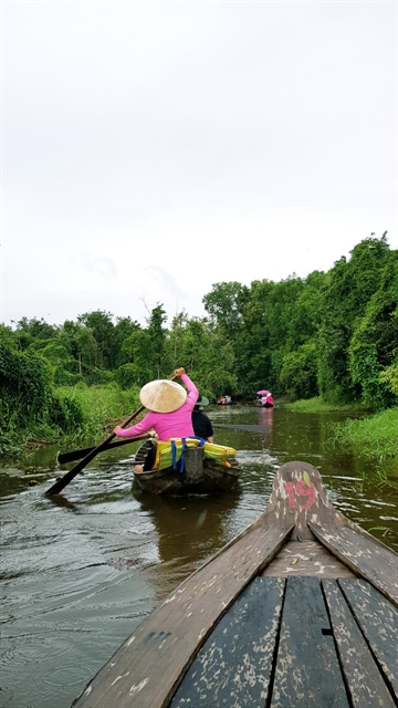 Đồng Tháp Province to focus on boosting tourism