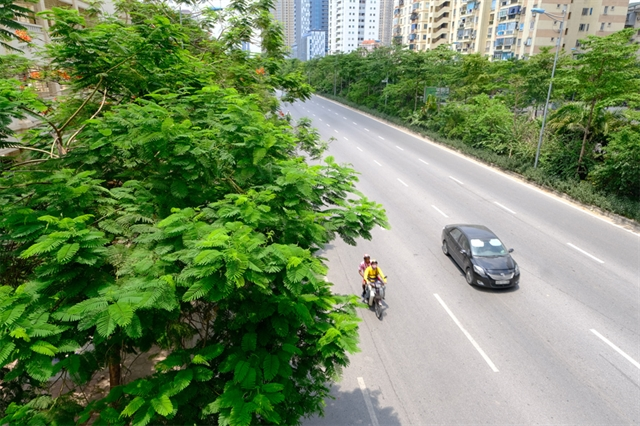 Authority plans to make Hà Nội greener