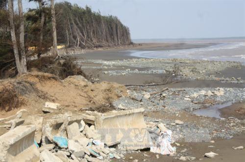 Trà Vinh buildsembankment to prevent coastal erosion