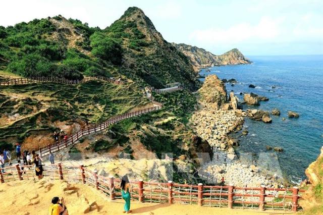 Bình Định kick-starts tourism revival efforts