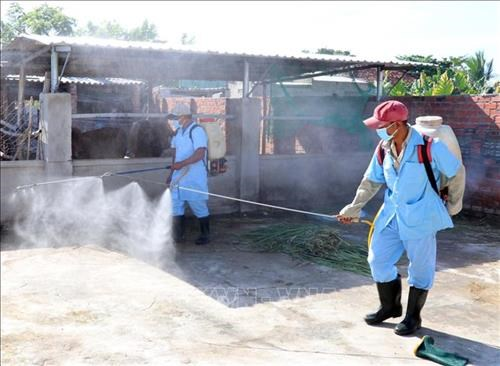 Ministry calls for drastic measures to control dengue fever