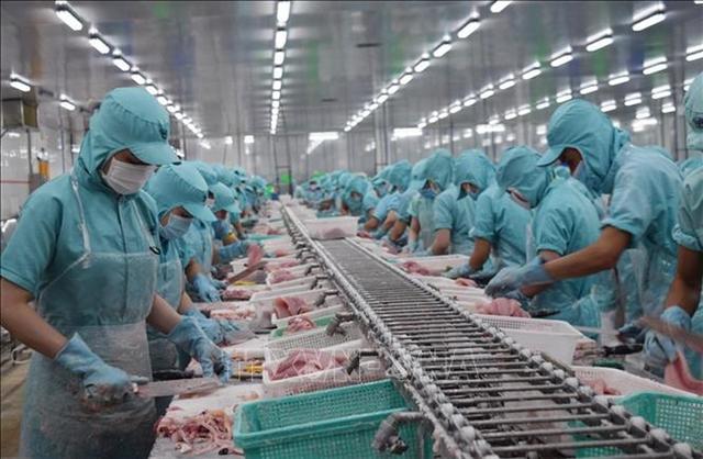 Sóc Trăng exports jump 26% despite pandemic