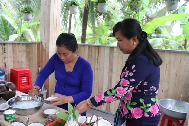 Trà Vinh sáp coconut gets VietGAP certification