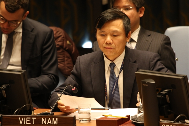 Việt Nam urges commitments at Berlin Conference on Libya to be promoted