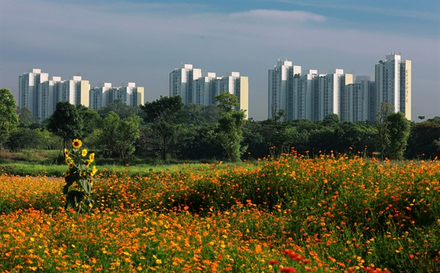 More regulations for developing green cities and climate-resilient urban areas