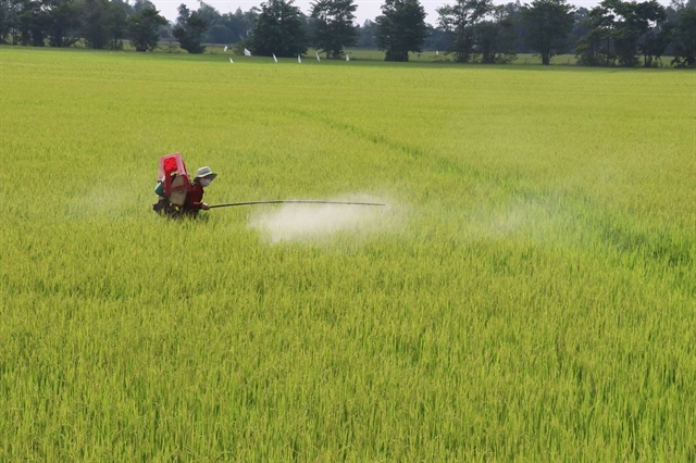 Đồng Tháp expands collection ofhazardous agricultural waste
