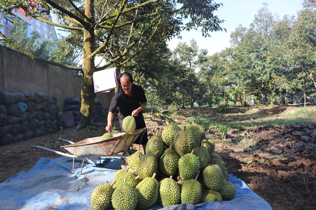 Mekong Delta to expand fruit,seafood productionin response to climate change