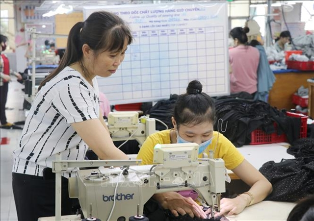 Woman goes from garment novice to master