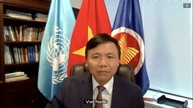 Việt Nam calls for peaceful dialogue to restore stability in Mali