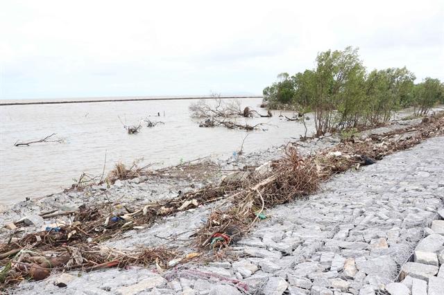 Cà Mau declares landslide emergency at western sea dykes