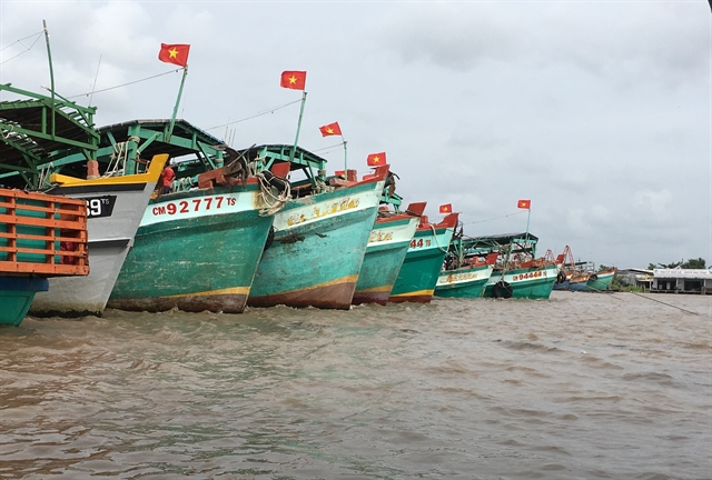 Cà Mau focuses on developing robust marine economy