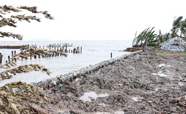 Cà Mau protectswestern sea dyke