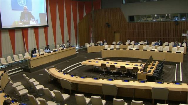 Việt Nam calls for resumption of peace talks in Yemen