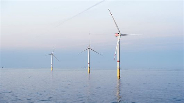 Việt Nam has great potential for wind power: conference